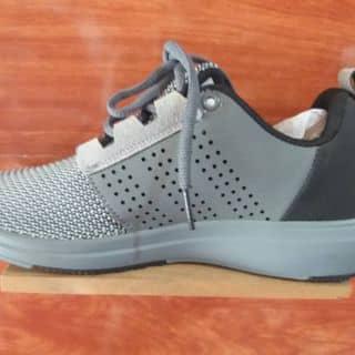 Adidas của ngokali31 tại Thừa Thiên Huế - 1076507