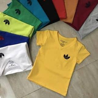 Áo cotton in hình 4c của trangtayninh87 tại Tây Ninh - 3842520