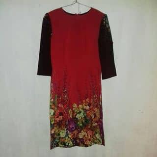 Áo dài nào của tranthihonghanh5 tại Thái Bình - 2842995