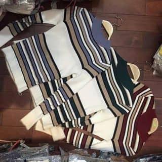Áo len của duchoang2002 tại Bắc Giang - 1441635