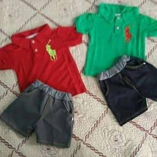 Áo phông polo thêu của dinhanh68 tại Lạng Sơn - 3277364