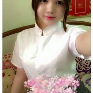 http://tea-3.lozi.vn/v1/images/resized/ao-somi-co-tru-1459035093-196531-1459158523