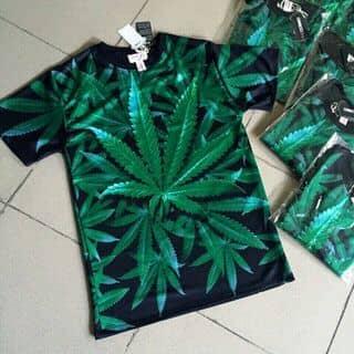 áo thun của duongmtp tại Quảng Bình - 1300401
