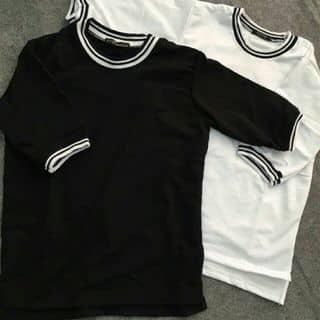 áo thun trắng đen của nguyenthaovy1609 tại Phường 1, Thành Phố Cà Mau, Cà Mau - 1081993