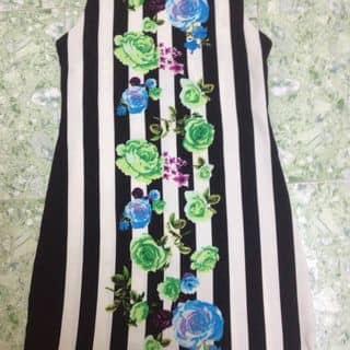 Áo váy nèo của trandung585 tại Quảng Ninh - 3790881