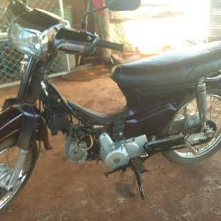 Bạn nào đam mê thich super Đream mình để lại cho của lovekpass tại Bình Phước - 1715863
