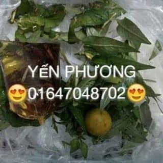 Bánh tráng muối tắc của phuongtran361 tại Trà Vinh - 3046137