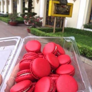 Bánh tuyệt vời của convitkhongtrym113 tại Hồ Chí Minh - 2827724