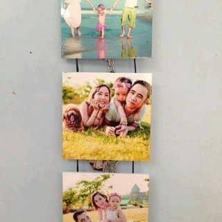 Bộ 3khung ảnh của thimaitran tại Chợ Hạ Long 2, Thành Phố Hạ Long, Quảng Ninh - 943550