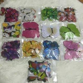 bộ bướm dán trang trí của malangthang tại Điện Biên - 2489369