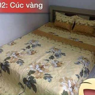 Bộ cotton nhung cuc vang trần bong của dothidung tại Bà Rịa - Vũng Tàu - 858883