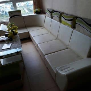 Bo ghe sofa  + ban  của wwwthanhwww tại Hồ Chí Minh - 3060807