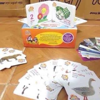 Bộ thẻ học cho bé của kieudienvu tại Vĩnh Yên, Thành Phố Vĩnh Yên, Vĩnh Phúc - 927253
