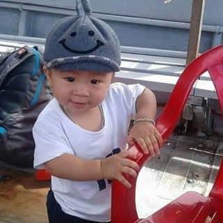 Boy của buithu55 tại Thành Phố Tuy Hòa, Phú Yên - 2909413