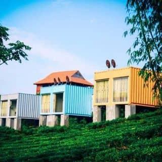 Bungalow container của huynhvan917 tại Phiêng Luông, Huyện Mộc Châu, Sơn La - 4492788