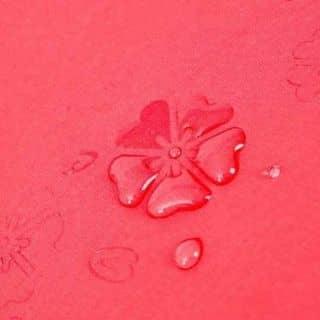 Chiếc dù gặp nước nở hoa thần kì. của yenle120 tại Phú Yên - 3305491