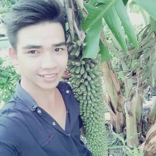 Chuối cây của kyphamvan tại Võ Thị Sáu, Thị Xã Tây Ninh, Tây Ninh - 992268