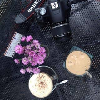 http://tea-3.lozi.vn/v1/images/resized/coffe-64454-1432964574