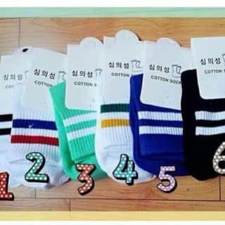Combo 5 đôi tất sọc Hàn Quốc #65k của thaihien18 tại Quảng Nam - 3213149