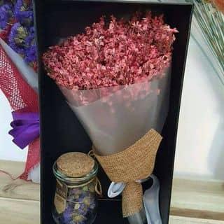 Combo Hộp quà của anngo8 tại Shop online, Huyện Bù Gia Mập, Bình Phước - 1220943
