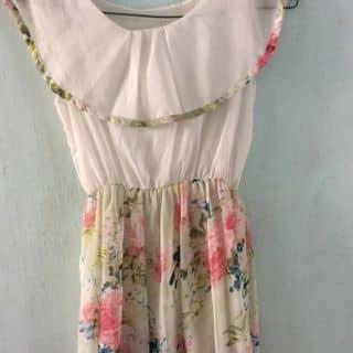 Đầm xoè thanh lí của kobatocandy tại Hồ Chí Minh - 1431859