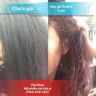 Dầu gội nhuộm tóc thảo dược solbol của pigpig7 tại Hồ Chí Minh - 3427720