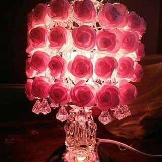 Đen ngu hoa hong của trangtrinh32 tại 2 Phan Đình Phùng, Thành Phố Hà Tĩnh, Hà Tĩnh - 1514626