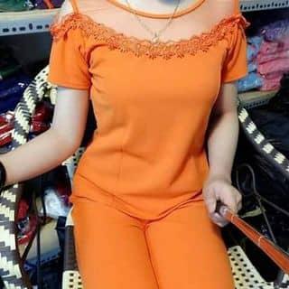 Đồ bộ của belathuy tại Quảng Trị - 3066731