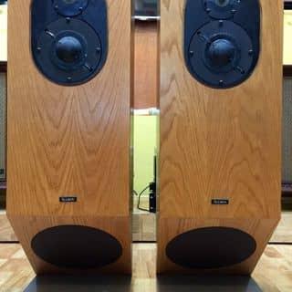 Đôi Loa Allison Acoustics của thaiaudiovn tại Hồ Chí Minh - 3213327