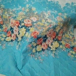 Drap cotton xoa nhung của nguyenmyly tại An Giang - 1463044