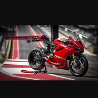 Ducati của manrung tại Shop online, Huyện Hoàng Su Phì, Hà Giang - 2233178