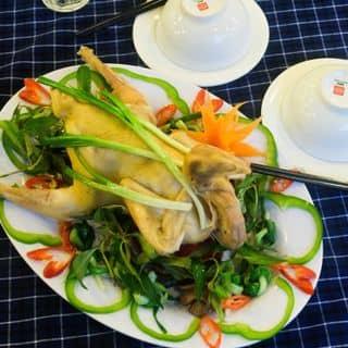 Gà luộc của thuly91 tại 63 Phạm Văn Hai, phường 3, Quận Tân Bình, Hồ Chí Minh - 3861378
