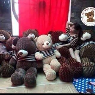 Gấu bông Teddy của changngo54 tại Thành Phố Nha Trang, Khánh Hòa - 2893421