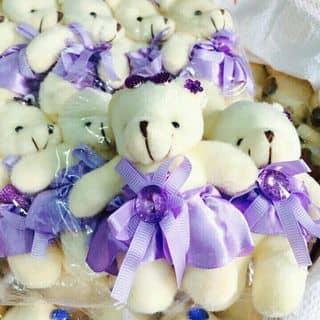 Gấu cưng nhiều màu sắc của trangcungs tại Khu Sinh Thái Deja Vu Huỳnh Kha, Thị Xã Trà Vinh, Trà Vinh - 1252716