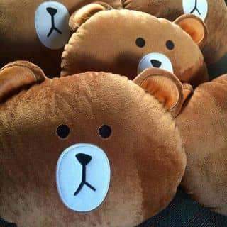 Gấu Nâu Brown của xutay tại 1 Tháng 5, Thành Phố Cà Mau, Cà Mau - 699156