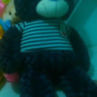 Gấu tecdi 1.1 của ledoi4 tại Bình Phước - 1260338