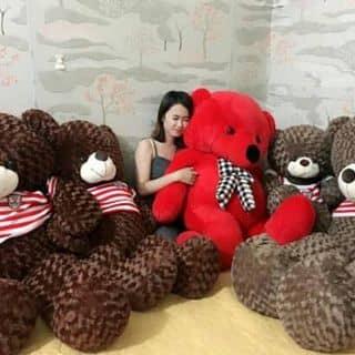 Gấu teddy của myhanh30996 tại Quảng Trị - 2071675