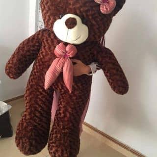 Gấu teddy của tongngoc87 tại Sơn La - 2426413
