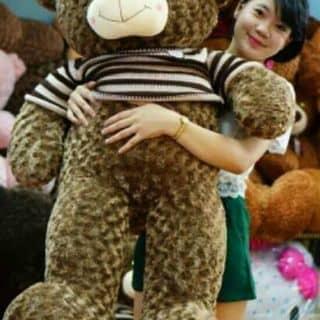 Gấu teddy của minhminh214 tại Bắc Ninh - 1104278