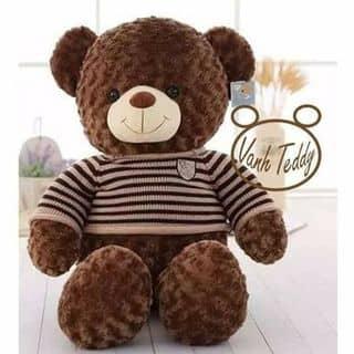 Gấu teddy của lethihangnga123 tại Gia Lai - 1286861
