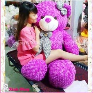 Gau teddy cực xinh của nambinh1 tại Thái Bình - 1294833