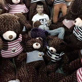 Gấu teddy đủ cỡ của thaothaoo8 tại Shop online, Huyện Quan Hóa, Thanh Hóa - 1780365