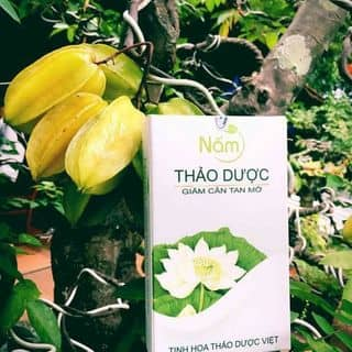 Giảm cân thảo dược nấm của bichngoc321 tại Chợ Gò Vấp, Nguyễn Thái Sơn, Quận Gò Vấp, Hồ Chí Minh - 1021979