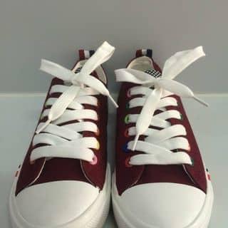 giày của queenciu tại Vĩnh Phúc - 953504