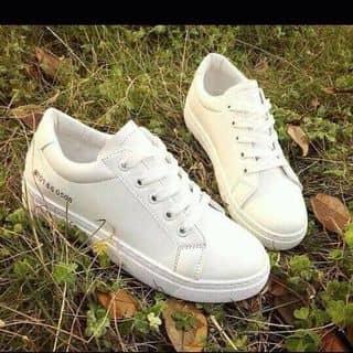 Giày  của linhhoai492001 tại Gia Lai - 958048