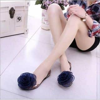 Giày bánh bèo của hattieu14 tại Lâm Đồng - 1049356