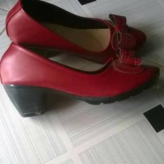 Giày búp bê cao 5 phân của 98258 tại 136 Nguyễn Huệ, Thành Phố Tuy Hòa, Phú Yên - 1177010