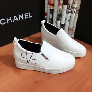 Giày đế độn 5 phân của shopdaunho tại Hồ Chí Minh - 3832856