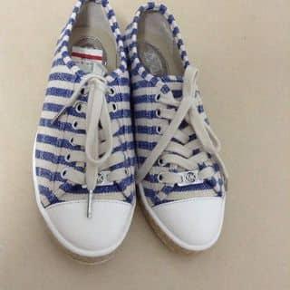 Giày Micheal Kors chuẩn từ US về của chjbj19 tại Hồ Chí Minh - 953966
