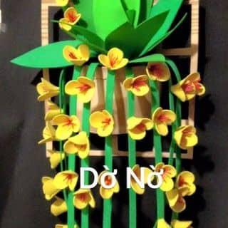 Giỏ hoa lan treo tường bằng xốp bitis  của dono2 tại Đội Cấn, Trưng Vương, Thành Phố Thái Nguyên, Thái Nguyên - 1464827